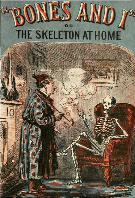 Bones and I, or, The skeleton at home (1871)