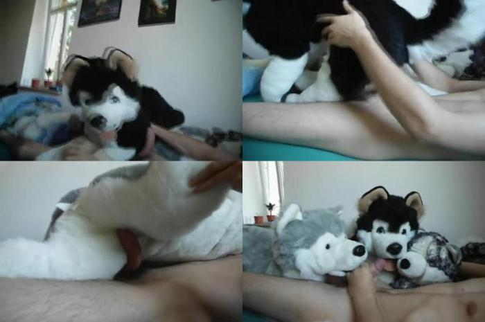 196170090 0498 zoogay man pawing off with 3 plush dog - Man Pawing Off With 3 Plush Dog - Male Bestiality