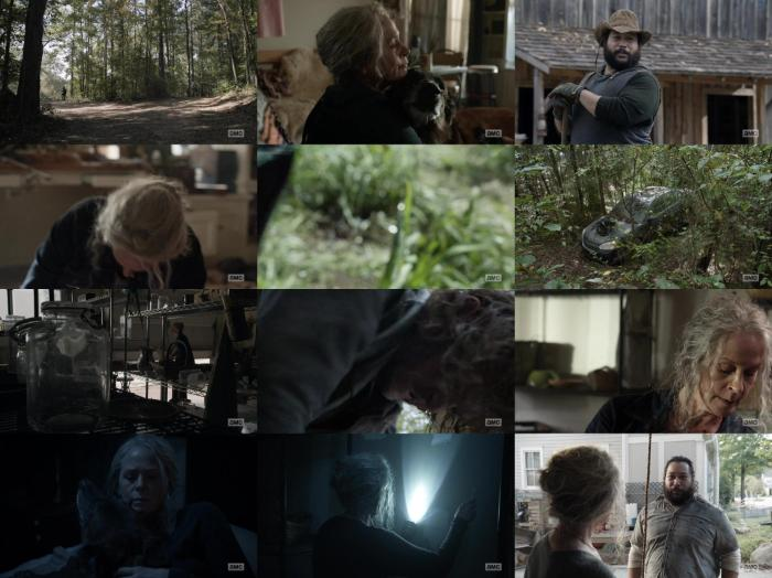 https://img52.pixhost.to/images/240/197835599_the-walking-dead-s10e21-1080p-web-h264-ggwp.jpg