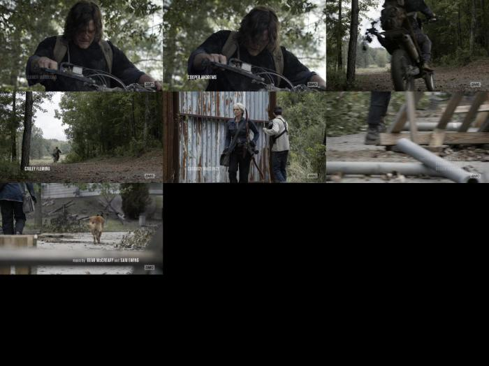 https://img52.pixhost.to/images/240/197835600_the-walking-dead-s10e21-1080p-web-h264-ggwp.jpg