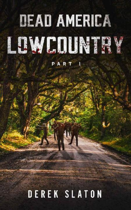 Dead America - Lowcountry Part 1 by Derek Slaton