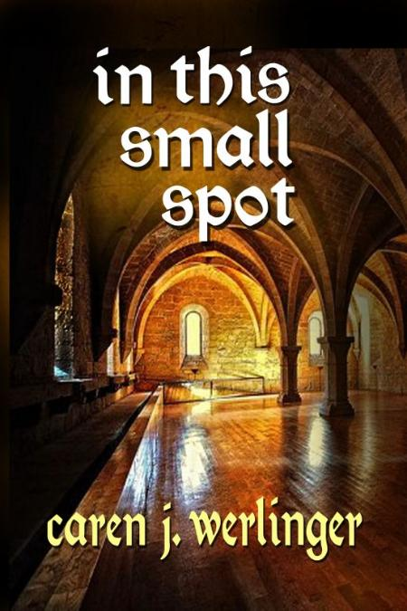 In This Small Spot by Caren J  Werlinger